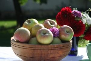 Ябълка сорт Мелодия (снимка)